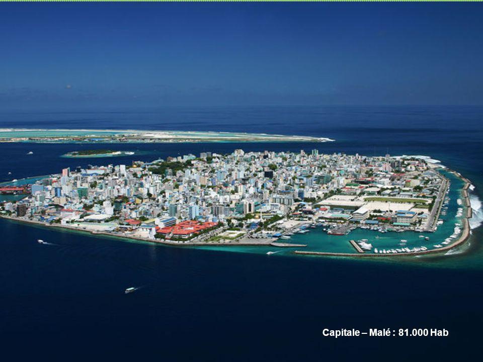 Capitale – Malé : 81.000 Hab