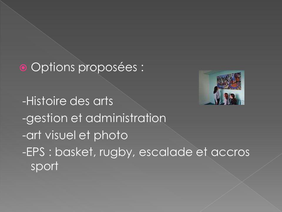 Options proposées : -Histoire des arts -gestion et administration -art visuel et photo -EPS : basket, rugby, escalade et accros sport