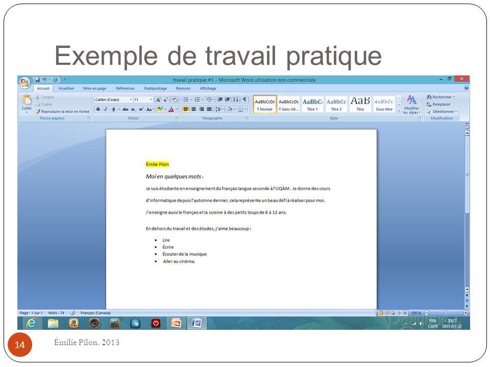 Exemple de travail pratique 14 Émilie Pilon. 2013