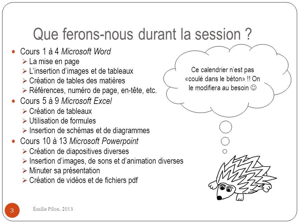 Que ferons-nous durant la session ? Cours 1 à 4 Microsoft Word La mise en page Linsertion dimages et de tableaux Création de tables des matières Référ