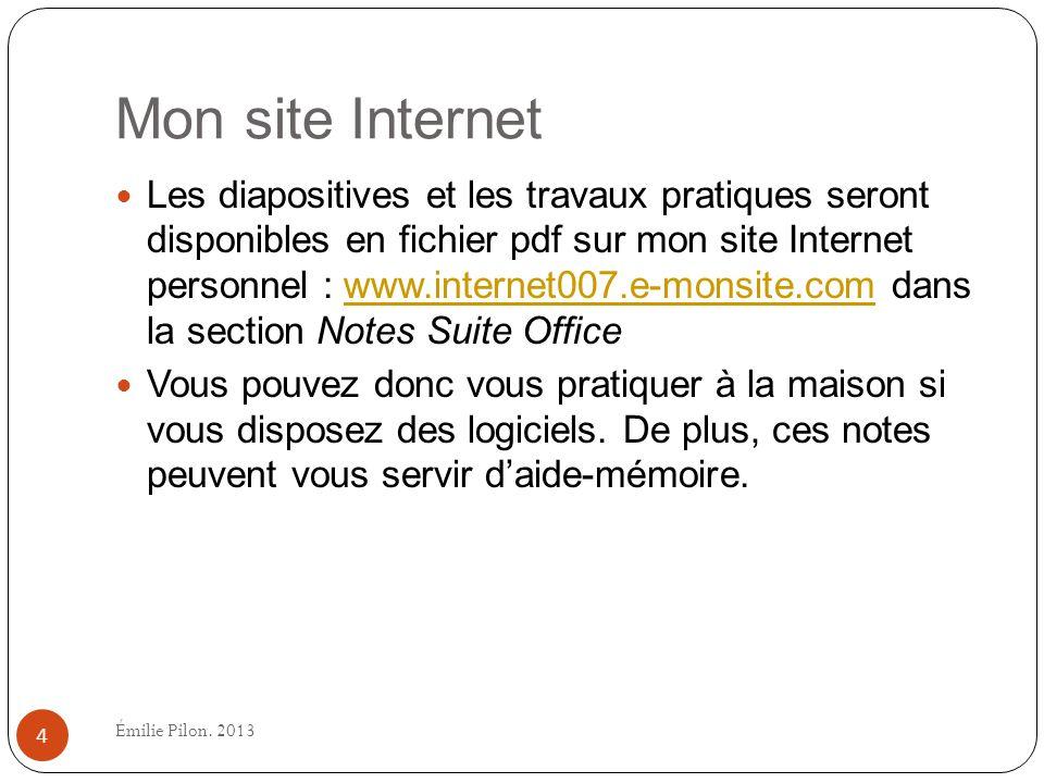 Mon site Internet Les diapositives et les travaux pratiques seront disponibles en fichier pdf sur mon site Internet personnel : www.internet007.e-mons