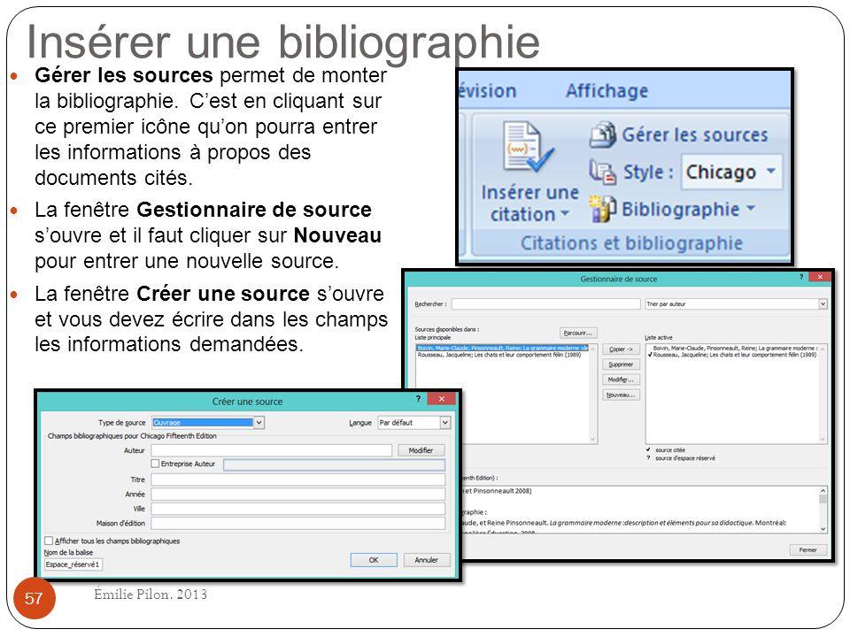 Insérer une bibliographie Gérer les sources permet de monter la bibliographie. Cest en cliquant sur ce premier icône quon pourra entrer les informatio