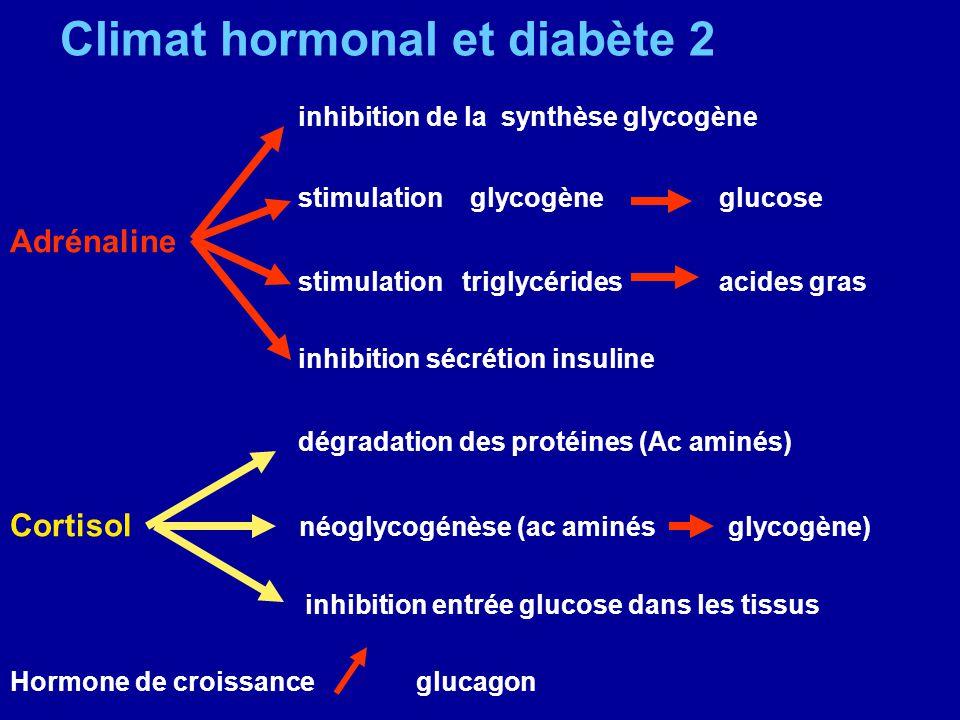 Climat hormonal et diabète 2 inhibition de la synthèse glycogène stimulation glycogène glucose Adrénaline stimulation triglycérides acides gras inhibi