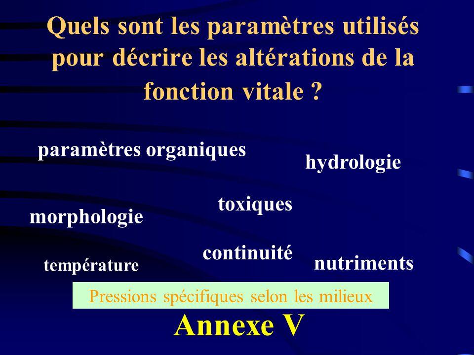 Quels sont les paramètres utilisés pour décrire les altérations de la fonction vitale ? morphologie température hydrologie paramètres organiques conti