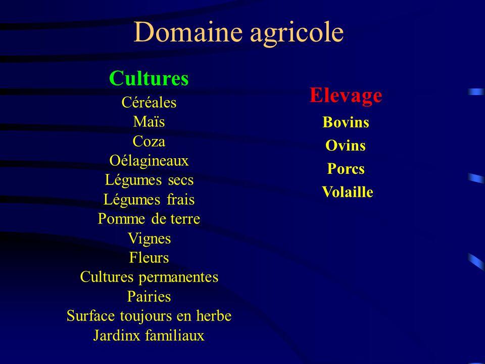 Cultures Céréales Maïs Coza Oélagineaux Légumes secs Légumes frais Pomme de terre Vignes Fleurs Cultures permanentes Pairies Surface toujours en herbe