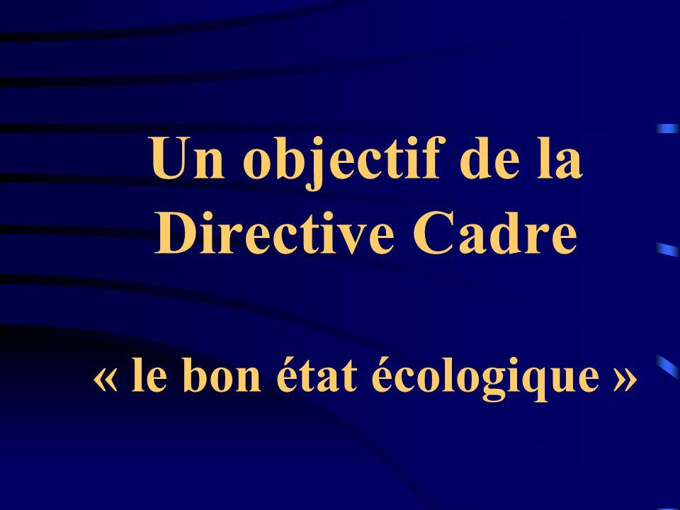 Un objectif de la Directive Cadre « le bon état écologique »