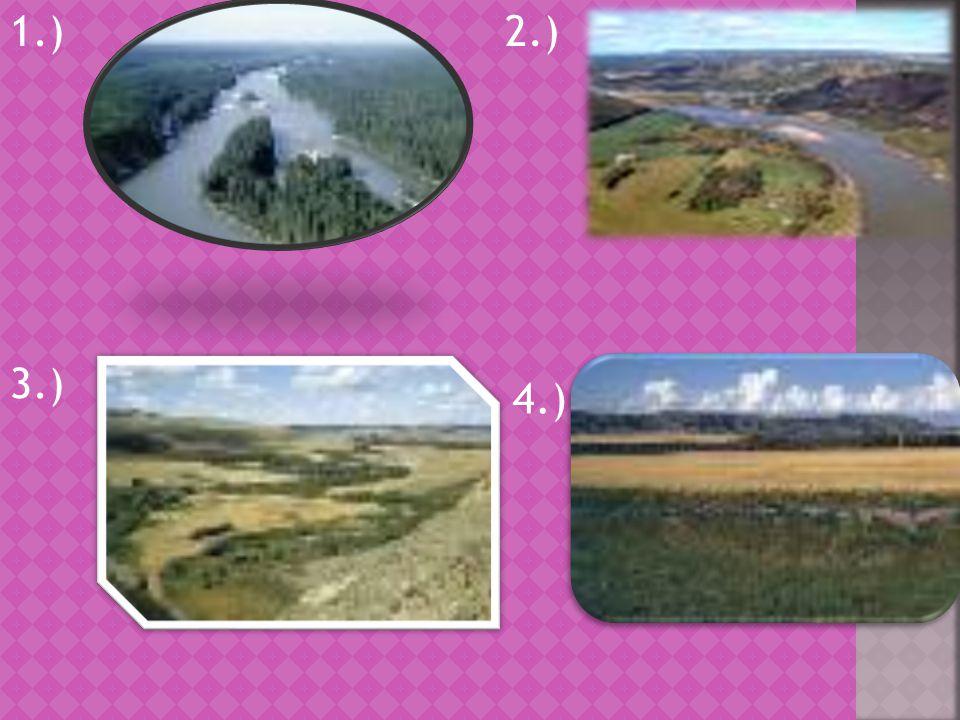 1.)2.) 3.) 4.)