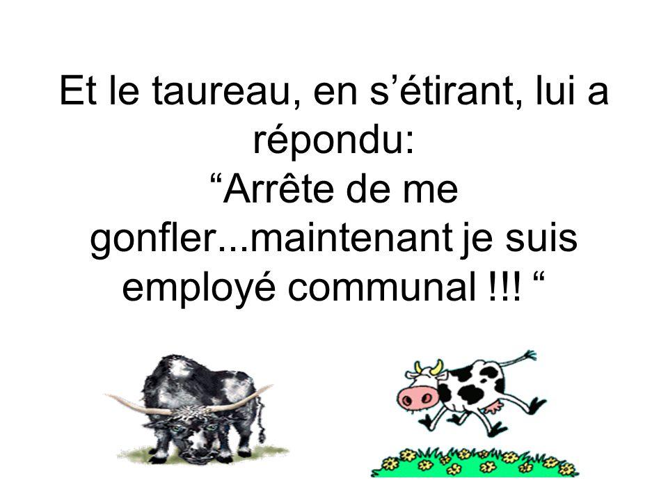 Et le taureau, en sétirant, lui a répondu: Arrête de me gonfler...maintenant je suis employé communal !!!
