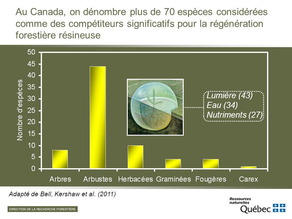 Au Canada, on dénombre plus de 70 espèces considérées comme des compétiteurs significatifs pour la régénération forestière résineuse Adapté de Bell, K