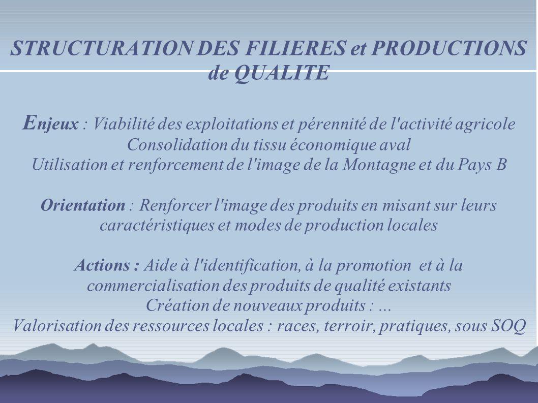 STRUCTURATION DES FILIERES et PRODUCTIONS de QUALITE E njeux : Viabilité des exploitations et pérennité de l'activité agricole Consolidation du tissu