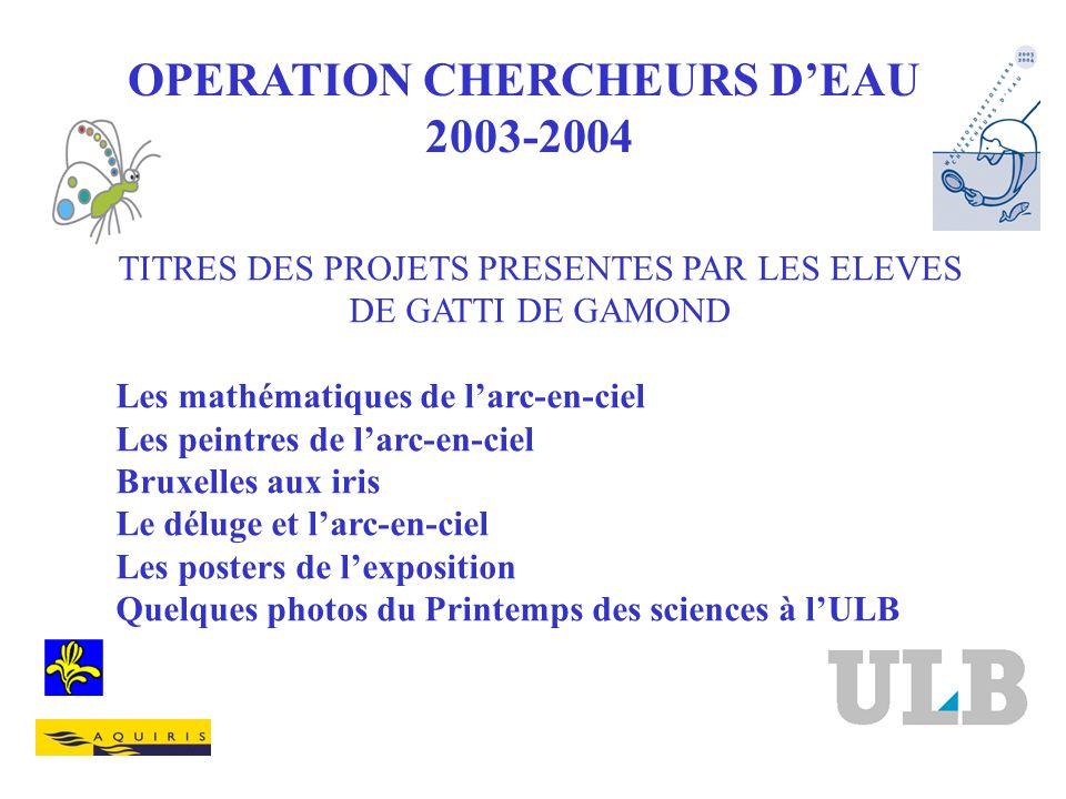 OPERATION CHERCHEURS DEAU 2003-2004 TITRES DES PROJETS PRESENTES PAR LES ELEVES DE GATTI DE GAMOND Les mathématiques de larc-en-ciel Les peintres de l