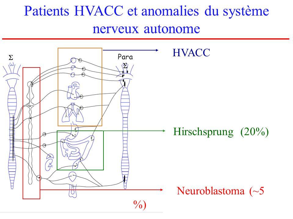 Hirschsprung (20%) Neuroblastoma (~5 %) Para HVACC Patients HVACC et anomalies du système nerveux autonome