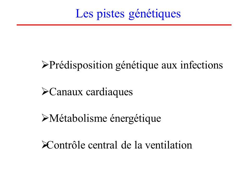 Les pistes génétiques Prédisposition génétique aux infections Canaux cardiaques Métabolisme énergétique Contrôle central de la ventilation