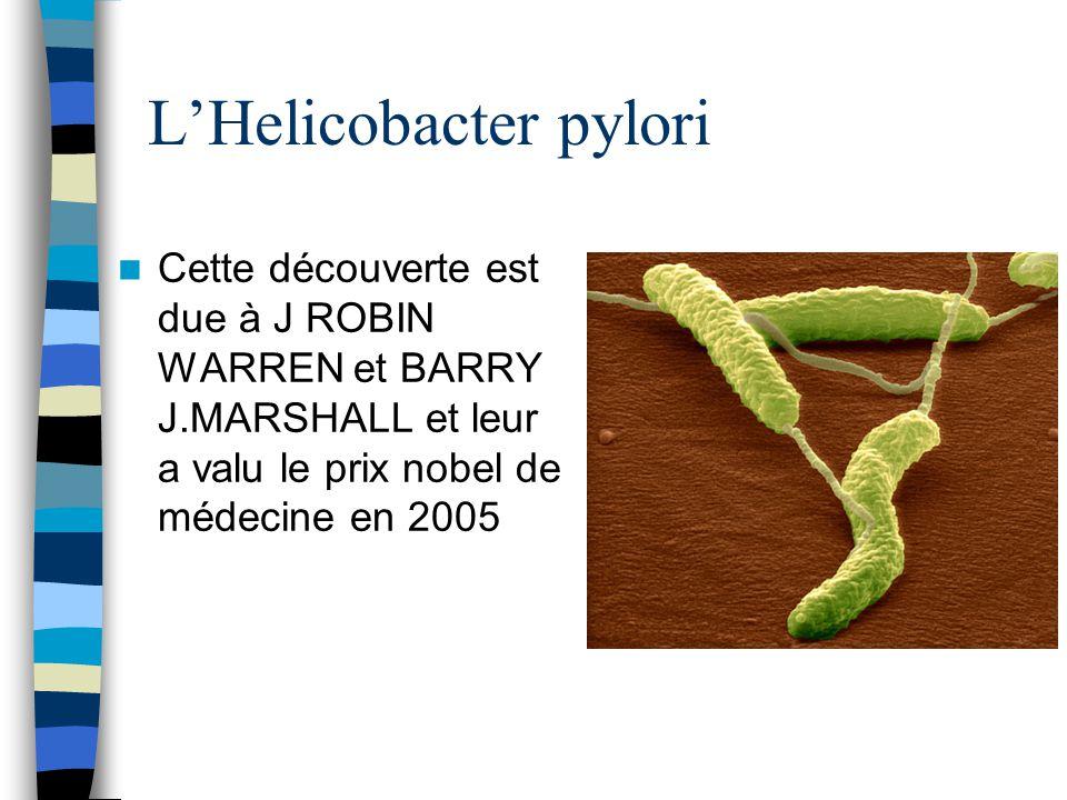 LHelicobacter pylori Cette découverte est due à J ROBIN WARREN et BARRY J.MARSHALL et leur a valu le prix nobel de médecine en 2005