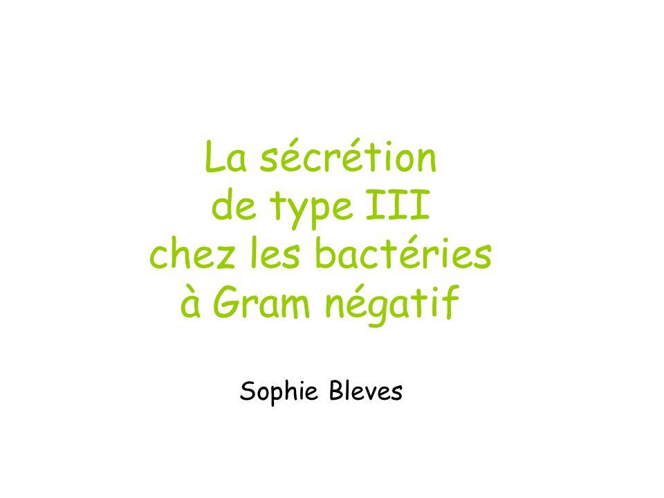 La sécrétion de type III chez les bactéries à Gram négatif Sophie Bleves