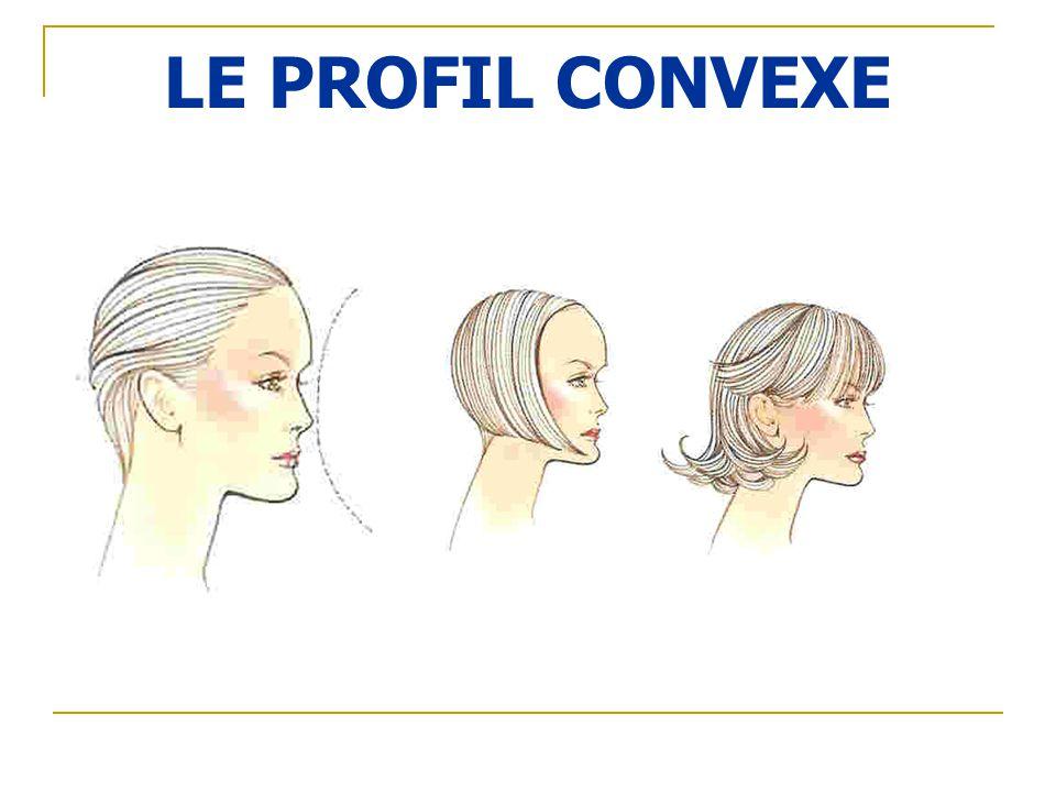 LE PROFIL CONVEXE