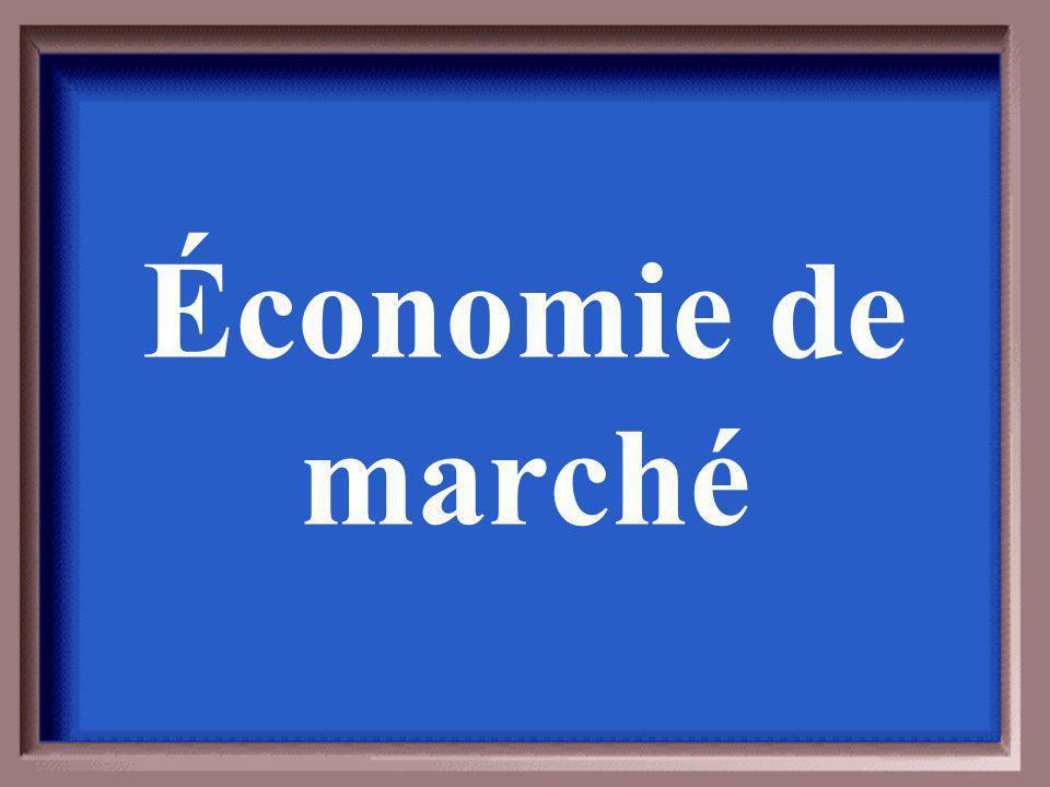 Dans ce système, quest ce qui influencent souvent les décisions économiques?