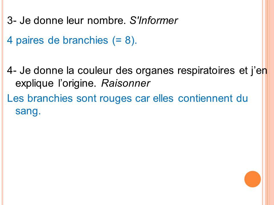 3- Je donne leur nombre. S'Informer 4 paires de branchies (= 8). 4- Je donne la couleur des organes respiratoires et jen explique lorigine. Raisonner