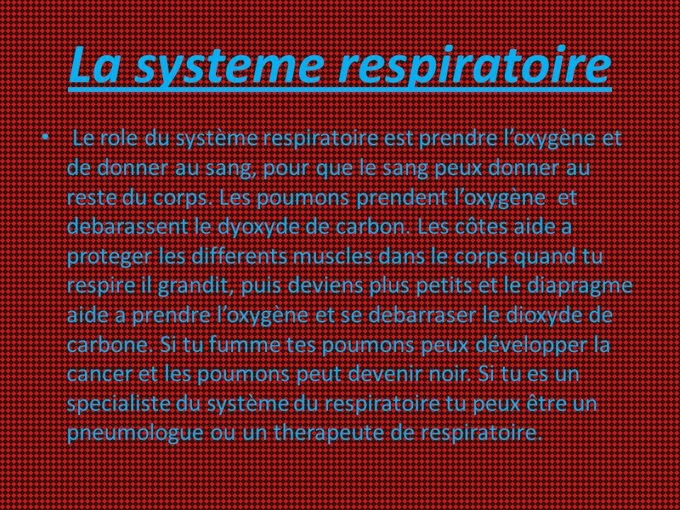 La systeme respiratoire Le role du système respiratoire est prendre loxygène et de donner au sang, pour que le sang peux donner au reste du corps. Les