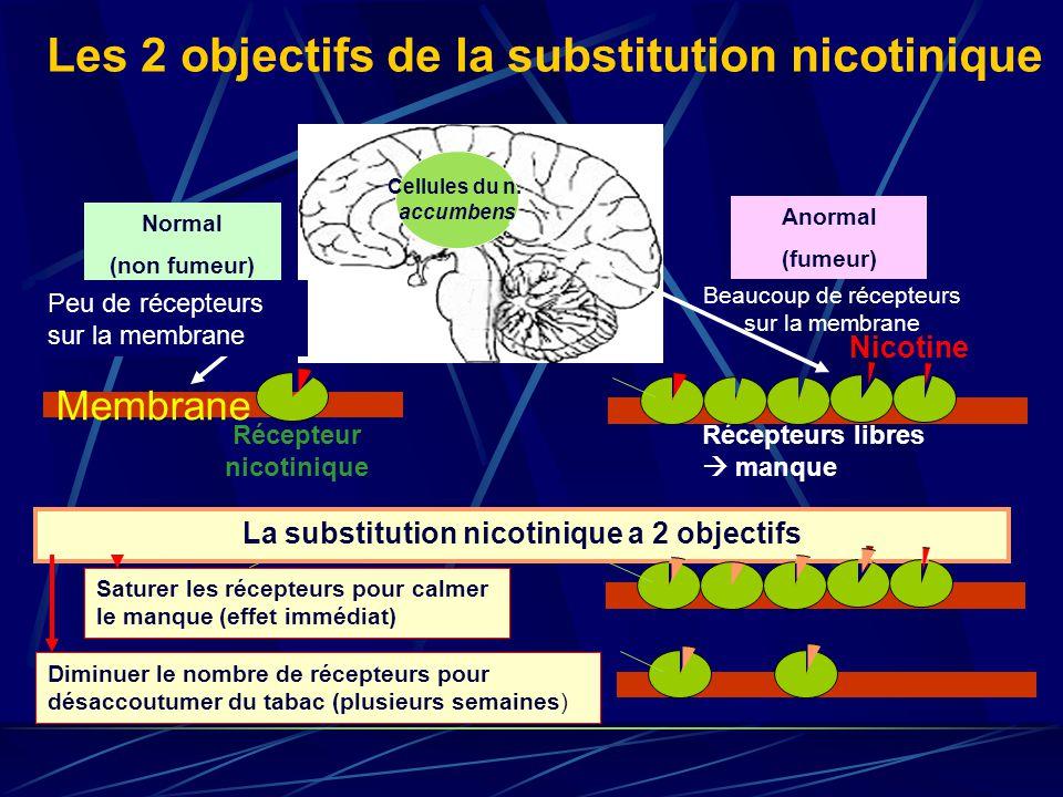 Les 2 objectifs de la substitution nicotinique Cellules du n. accumbens Normal (non fumeur) Anormal (fumeur) Récepteurs libres manque Membrane Récepte