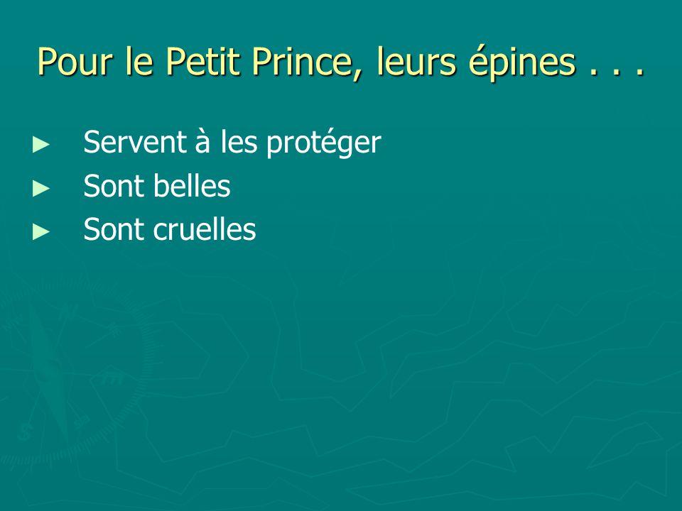 Pour le Petit Prince, leurs épines... Servent à les protéger Sont belles Sont cruelles