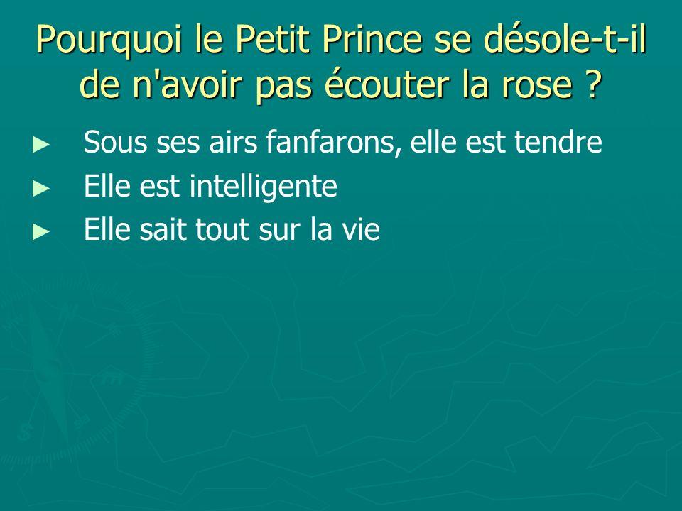 Pourquoi le Petit Prince se désole-t-il de n avoir pas écouter la rose .