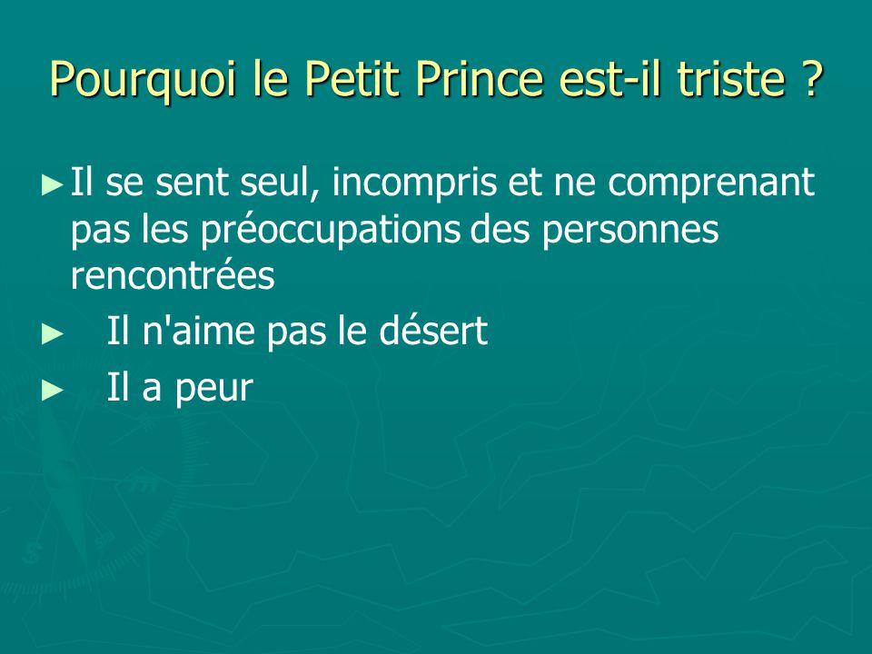 Pourquoi le Petit Prince est-il triste .