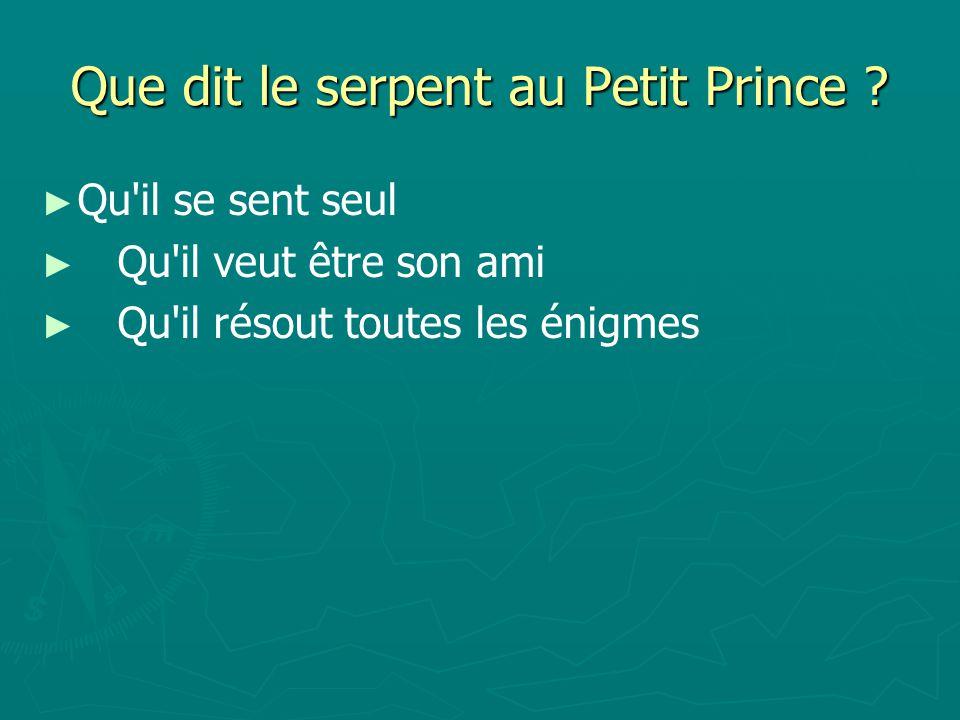 Que dit le serpent au Petit Prince .