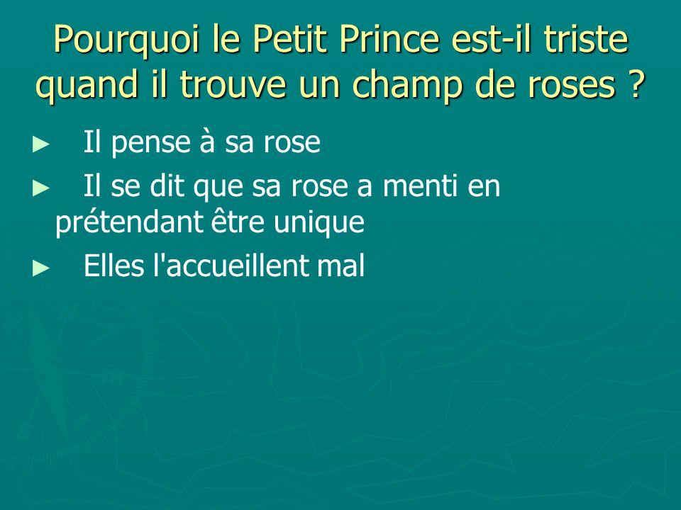 Pourquoi le Petit Prince est-il triste quand il trouve un champ de roses .