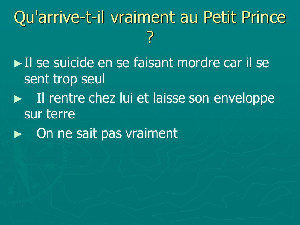 Qu arrive-t-il vraiment au Petit Prince .