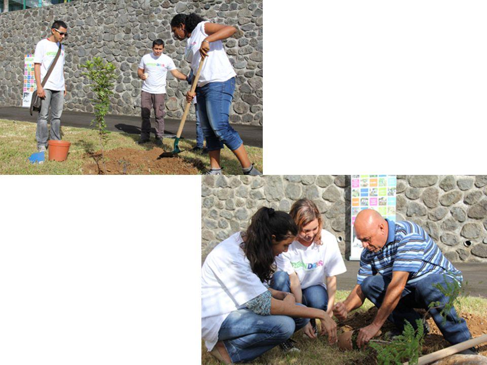 Rentrée 2013: Création de latelier des Eco-Ambassadeurs 2 élèves par classe en moyenne Réunion 2 fois par semaine Travail sur projets en lien avec le développement durable