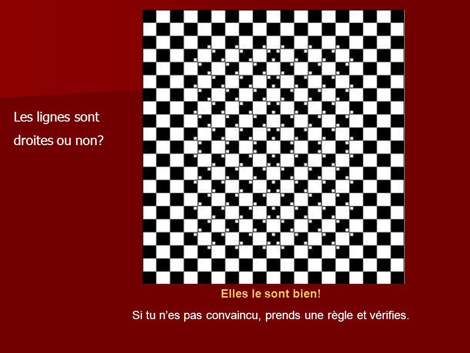 Illusion d´optique hors du commun...