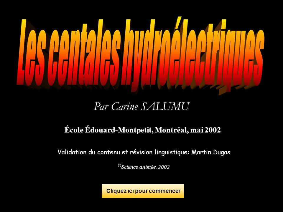 Par Carine SALUMU École Édouard-Montpetit, Montréal, mai 2002 Validation du contenu et révision linguistique: Martin Dugas Science animée, 2002 Clique