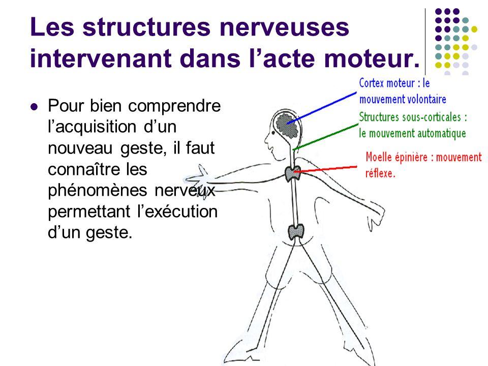 Les structures nerveuses intervenant dans lacte moteur. Pour bien comprendre lacquisition dun nouveau geste, il faut connaître les phénomènes nerveux