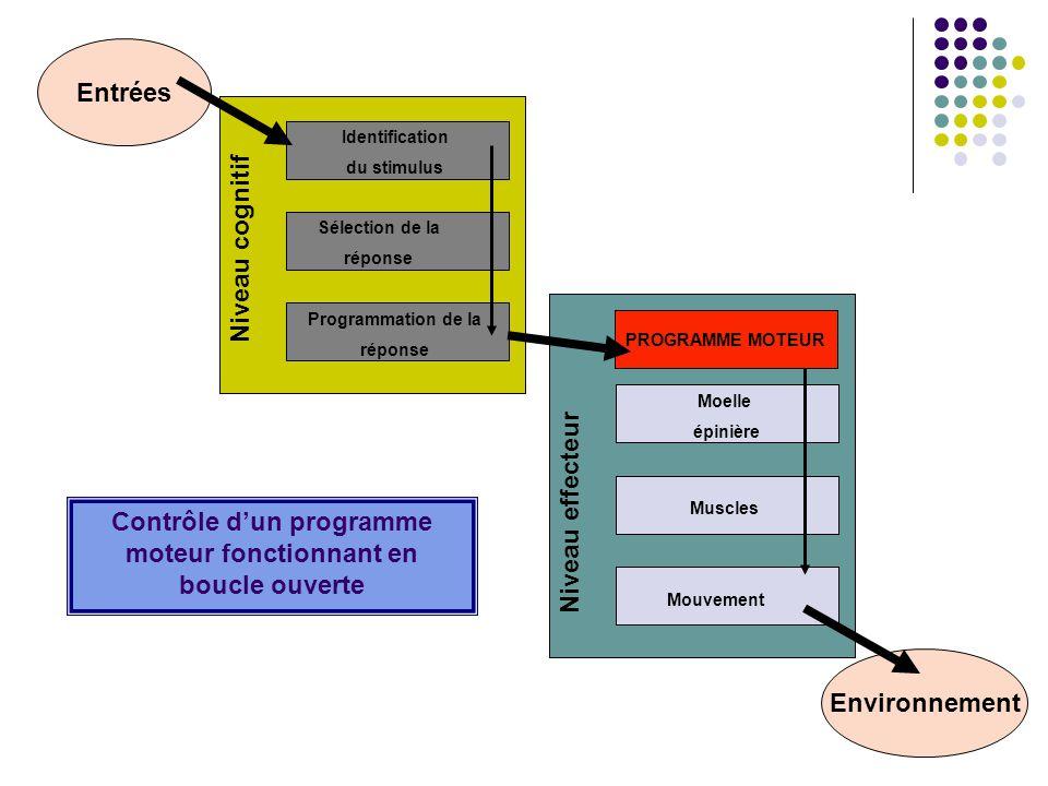 Entrées Environnement Niveau effecteur Moelle épinière Muscles Mouvement PROGRAMME MOTEUR Contrôle dun programme moteur fonctionnant en boucle ouverte