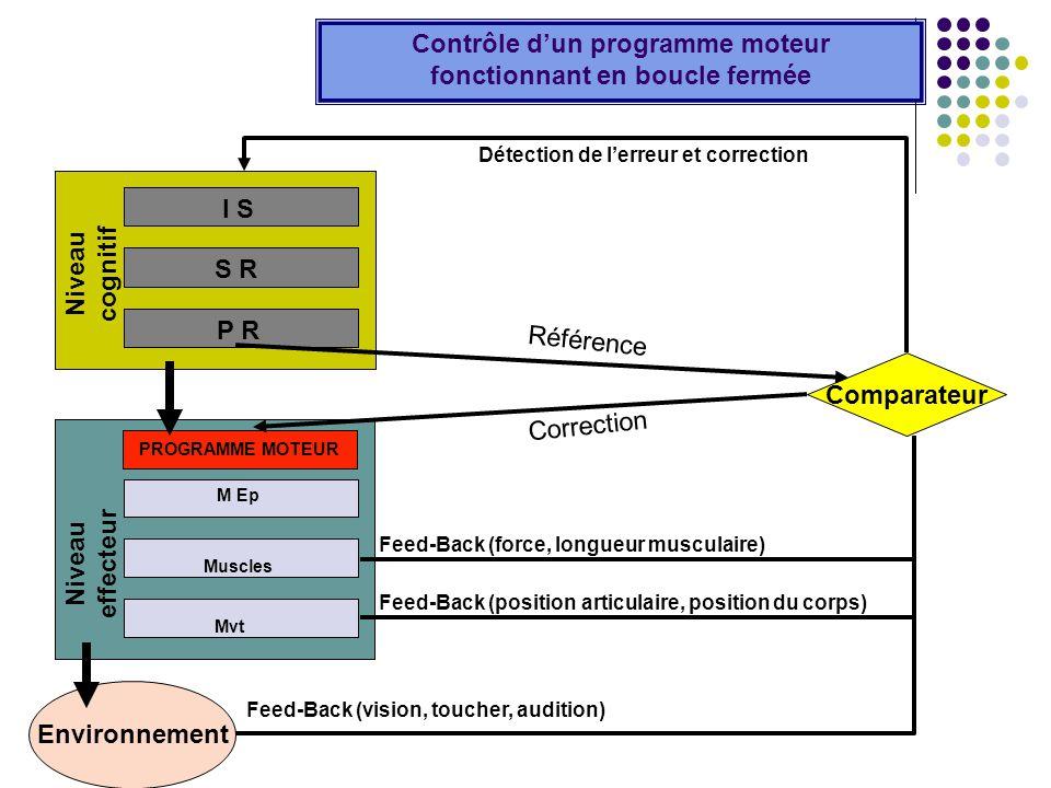 Niveau cognitif I S S R P R Environnement Niveau effecteur M Ep Muscles Mvt PROGRAMME MOTEUR Contrôle dun programme moteur fonctionnant en boucle ferm