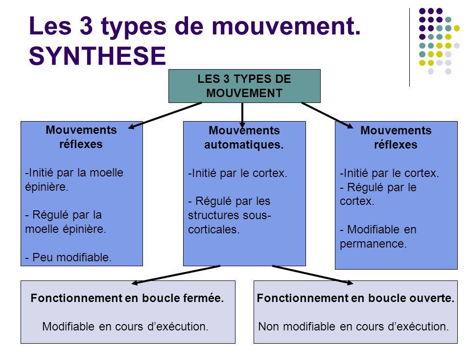 Les 3 types de mouvement. SYNTHESE LES 3 TYPES DE MOUVEMENT Mouvements réflexes -Initié par la moelle épinière. - Régulé par la moelle épinière. - Peu