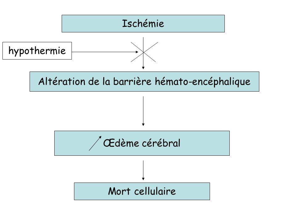 Ischémie Altération de la barrière hémato-encéphalique Œdème cérébral Mort cellulaire hypothermie