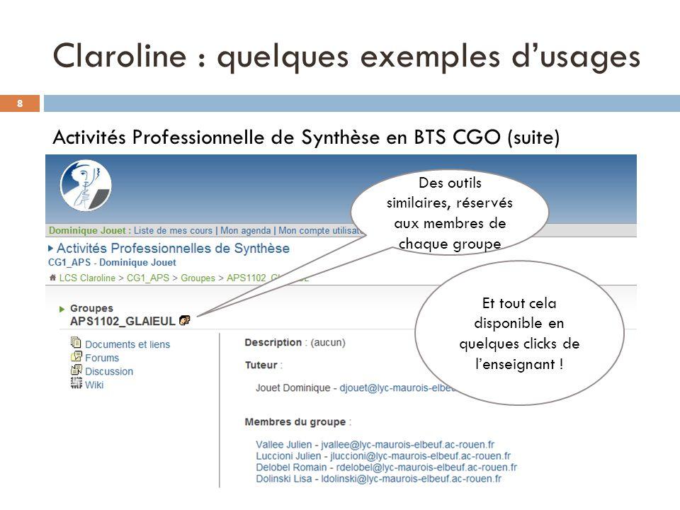 Claroline : quelques exemples dusages Activités Professionnelle de Synthèse en BTS CGO (suite) Des outils similaires, réservés aux membres de chaque g