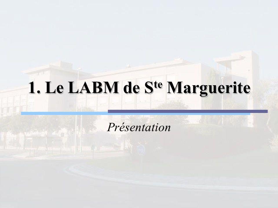 Le LABM de S te Marguerite Environ 40 Million de B/an 600 dossiers par jour : 400 le matin entre 6h et 13h 200 entre 13h et 6h Traitement en routine et en urgence Le LaboratoireSGLGestion du projetCCNLes sociétésProposition