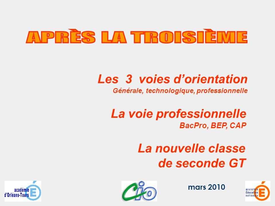 mars 2010 Les 3 voies dorientation Générale, technologique, professionnelle La voie professionnelle BacPro, BEP, CAP La nouvelle classe de seconde GT