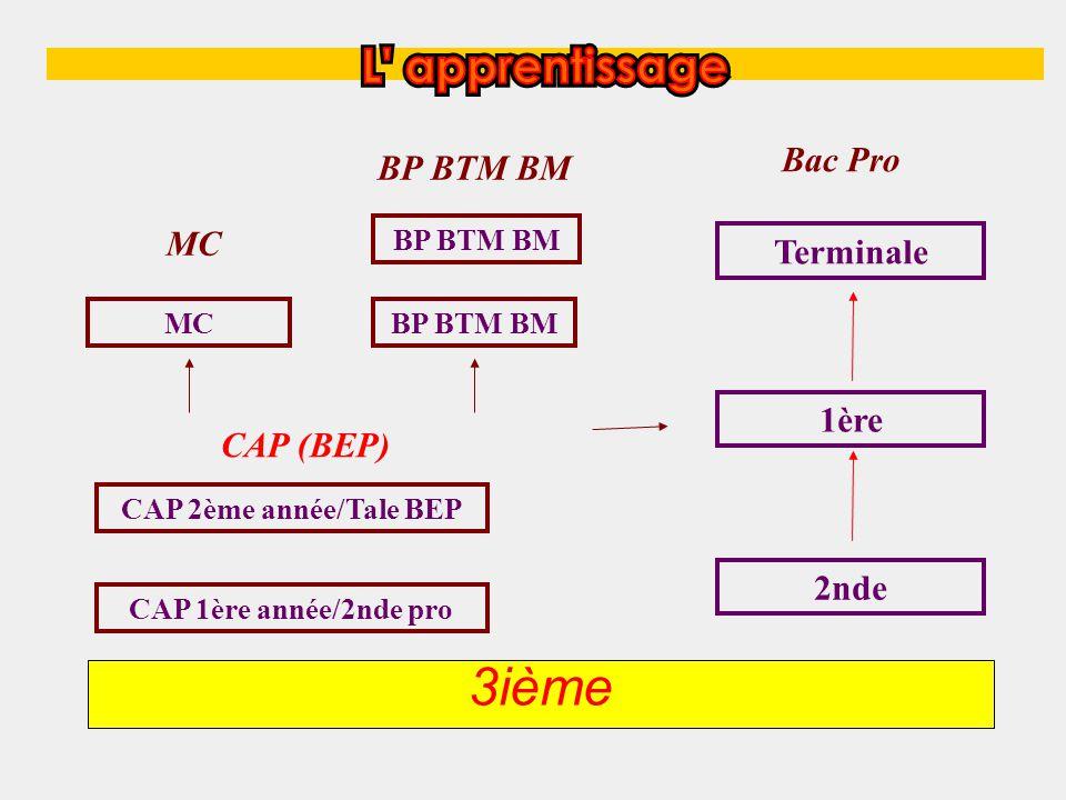 3ième CAP 1ère année/2nde pro CAP 2ème année/Tale BEP CAP (BEP) MC BP BTM BM Terminale 1ère 2nde Bac Pro BP BTM BM MC