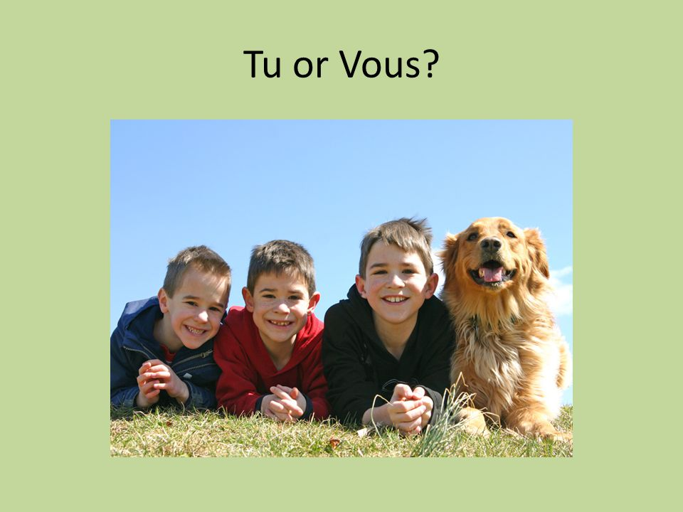 Tu or Vous?