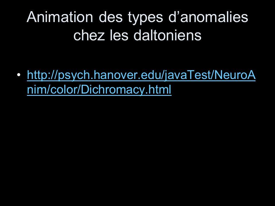 Animation des types danomalies chez les daltoniens http://psych.hanover.edu/javaTest/NeuroA nim/color/Dichromacy.htmlhttp://psych.hanover.edu/javaTest