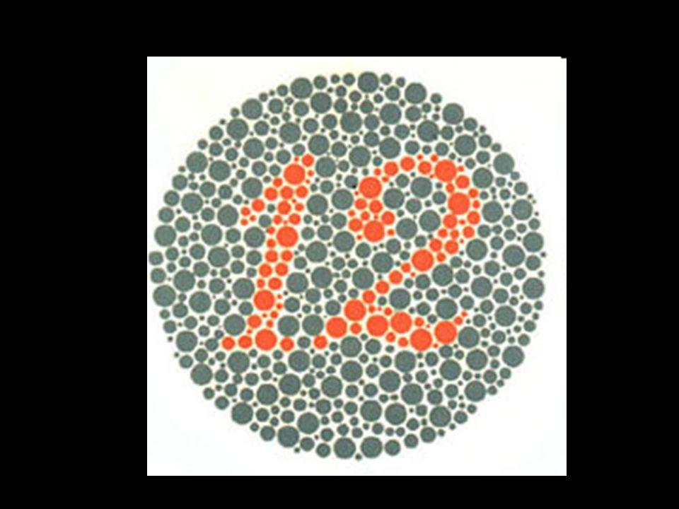12 Tout le monde peut voir le chiffre