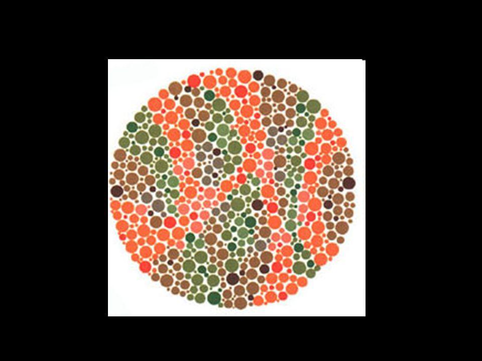 Rien Un daltonien va voir le chiffre 45