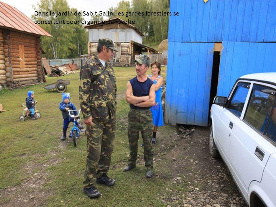Pour organiser la récolte, nous avons besoin de plusieurs chevaux et les voisins de Sabit Galin sont mis à contribution. Un garde forestier examine un