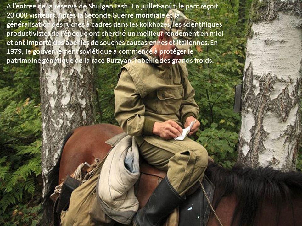 Éleveurs de chevaux depuis toujours, les Bashkirs ruraux lutilisent encore comme de moyen de transport, pour les travaux des champs. Autrefois, la via
