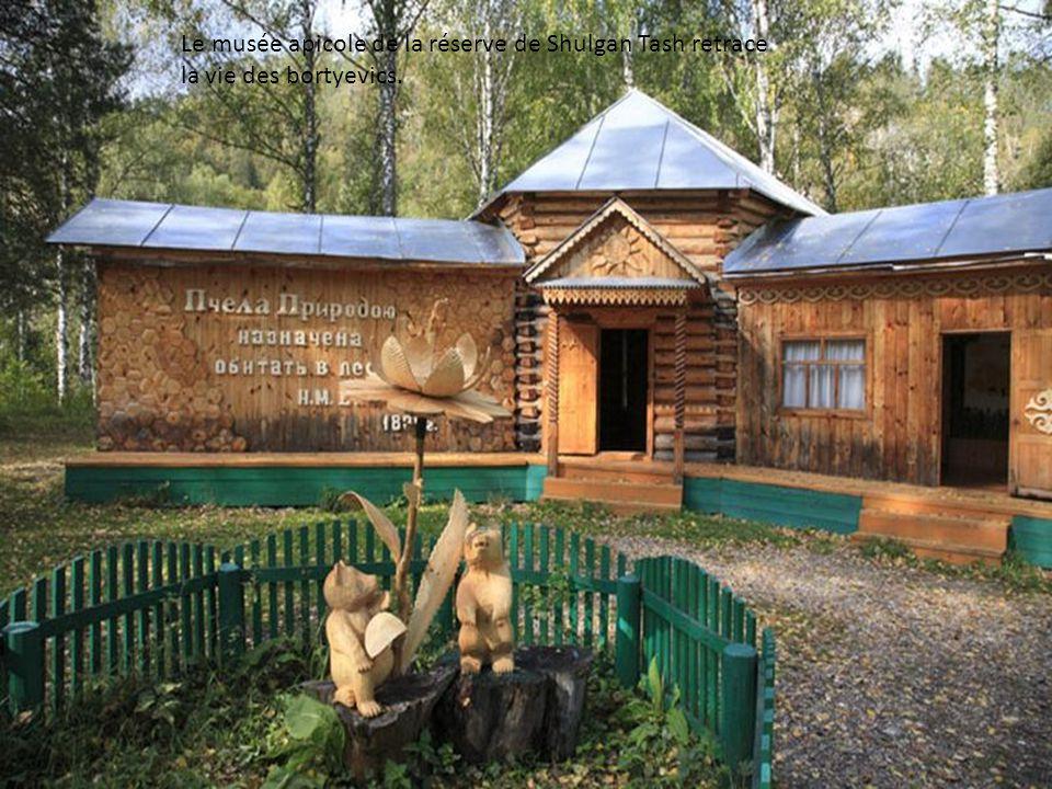 Des Bortyes sculptés près du musée apicole de la réserve. À lépoque communiste, les « bortyes » nont pas été collectivisés. Les bortyevics pouvaient e