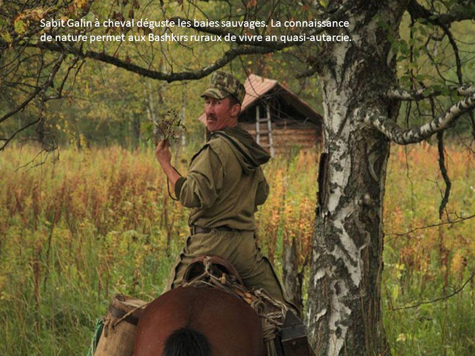 Alkar Isanomatov, Issangugin Sentimir, garde-forestiers, apiculteurs, partent à cheval pour récolter leurs bortyes pour le compte de la réserve
